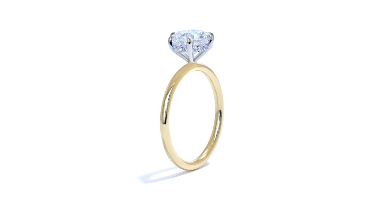 jb4421_lgd1025 - Six Prong Engagement Ring | Hidden Halo at Ascot Diamonds