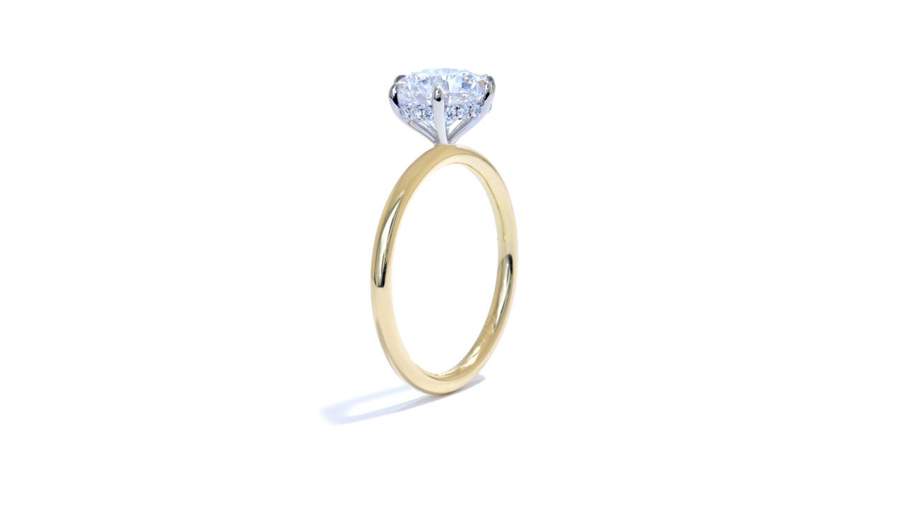 jb5535_lgd1552 - Fine Round Diamond Solitaire Ring at Ascot Diamonds